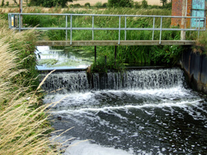River Eden - Gabriels Fishery, Kent