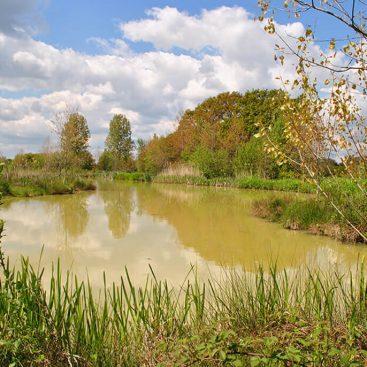 Admirals Lake - Gabriels Fishery, Kent